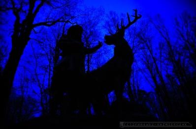 81_Zameczek-Mysliwski-PROMNICE_Tychy_18-11-2010_fot_I-Kazmierczak